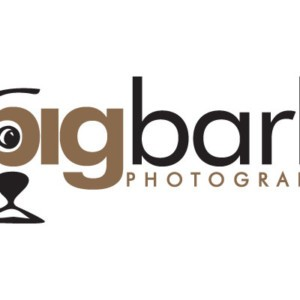 Big Bark Photography